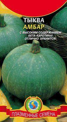 Тыква Амбар ЦВ/П (ПЛАЗМА) 1гр среднеспелый полукустистый