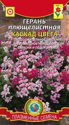 Цветы Герань Каскад Цвета ЦВ/П (ПЛАЗМА) плющелистная однолетнее 45см