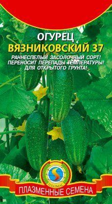Огурец Вязниковский ЦВ/П (ПЛАЗМА) раннеспелый