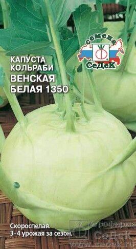 Капуста кольраби Венская Белая ЦВ/П (СЕДЕК) 0,5гр скороспелый