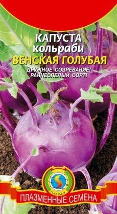 Капуста кольраби Венская Голубая ЦВ/П (ПЛАЗМА) 0,5 гр среднеранний