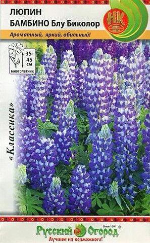 Цветы Люпин Бамбино Блу биколор ЦВ/П (НК) многолетнее 35-45см