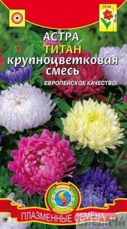 Цветы Астра Титан Смесь ЦВ/П (ПЛАЗМА) пионовидная 70см