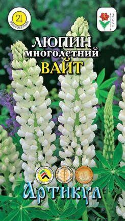 Цветы Люпин Вайт Многолетний ЦВ/П (АРТИКУЛ) многолетнее до 1,3м