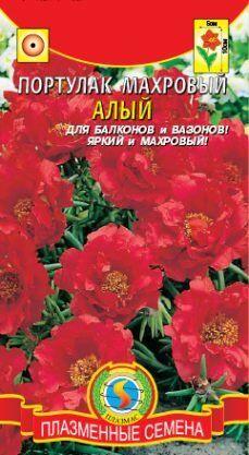 Цветы Портулак Алый махровый ЦВ/П (ПЛАЗМА)