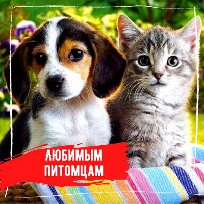 Ваши Любимые сковороды и кастрюли◇Начинаем выбирать подарки — Любимым питомцам — Для животных