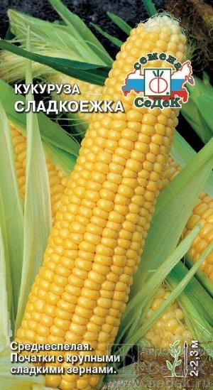 Кукуруза Сладкоежка (сахарная)/Седек/цп