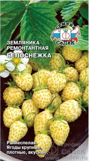 Ягода Белоснежка земляника /Седек/цп