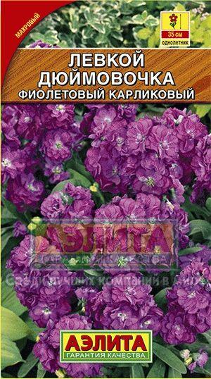 Цветы Левкой Дюймовочка карликовый, фиолетовый/Аэлита/цп