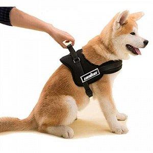 Спортивная шлейка для собак Размер М, обхват груди 65-80 см