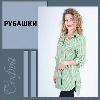 Софья ▶ ▷ Трикотаж с 36 по 72 размер ▷ — Стильные рубашки до 64 размера