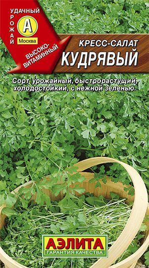 Кресс-салат Кудрявый