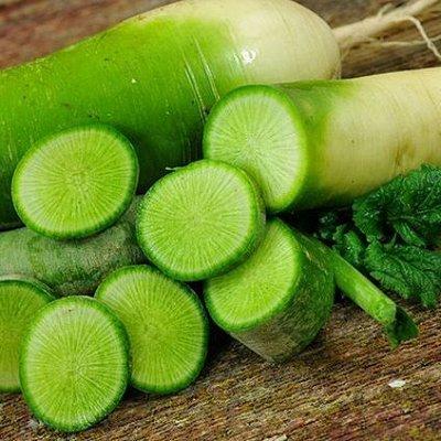 Семена от бегонии до петунии, а также семена овощей и зелени — Редька, редис, репа, дайкон — Семена овощей