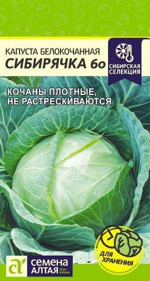 Капуста Сибирячка 60/Сем Алт/цп 0,5 гр. Сибирская Селекция!