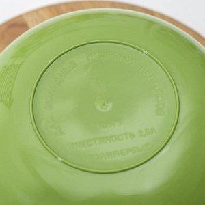 Миска «уДачная», 2,5 л, цвет зелёный