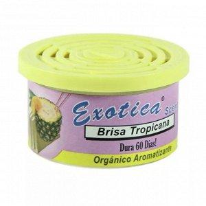 Ароматизатор органический Scent Organic - Tropicana breeze Exotica ESC24-TRO Tropicana breeze/тропический бриз