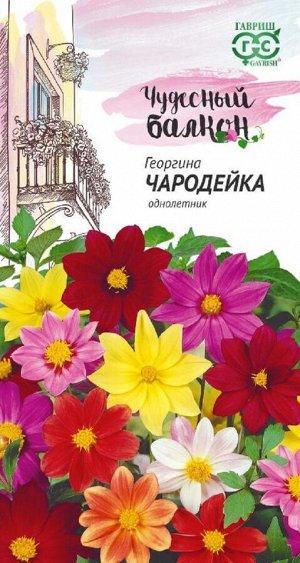 Георгина Чародейка, смесь 0,3 г серия Чудесный балкон
