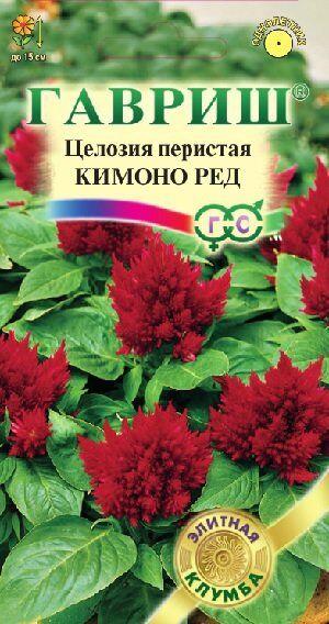 Целозия Кимоно Ред перистая 10 шт.* Саката серия Элитная клумба