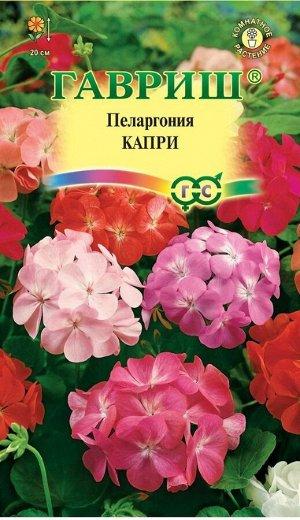 Пеларгония Капри F2 садовая* 4 шт.