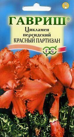 Цикламен Красный партизан персидский* 3 шт.