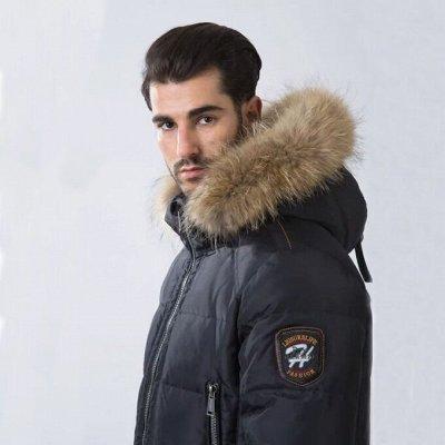 HERMZI — мужские куртки и пуховики. Цены супер