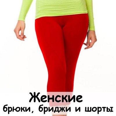 S*h*i*l*c*o-спортивная одежда — Брюки, бриджи и шорты женские — Спортивные штаны