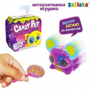 Игрушка интерактивная Crazy Pet, бегает с конфеткой, цвета МИКС