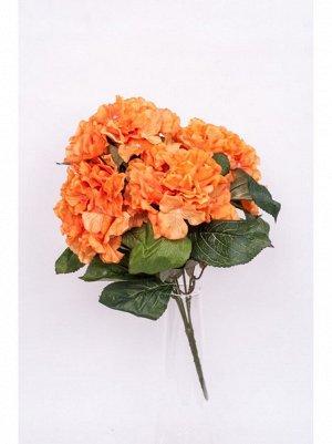 Гортензия букет 5 цветков оранж