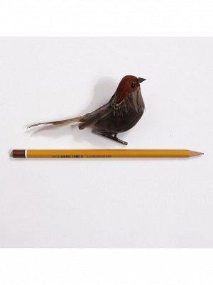 Птичка на клипе 10 см цвет серый HS-18-6