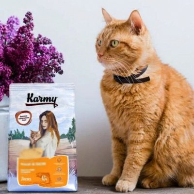 Karmy - корм для собак и кошек премиум класса! №34 — НОВИНКА - Karmy для кошек привередливых в питании - 10 кг! — Корма