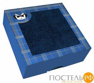 ПМ400-40-70-кор Полотенце махровое 40х70 в подарочной коробке Полотенце махровое 40х70 в подарочной коробке