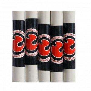 Соус художественный, белый, 5 штук, «Подольские товары для художников», в блистере