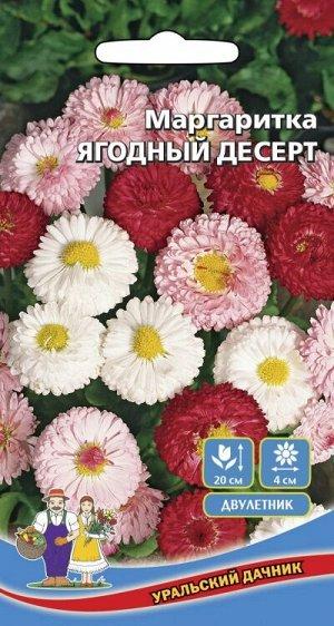 Цветы Маргаритка Ягодный Десерт (УД) (густомахровая,смесь,морозоуствойчивавыс.20см,диам.4см)