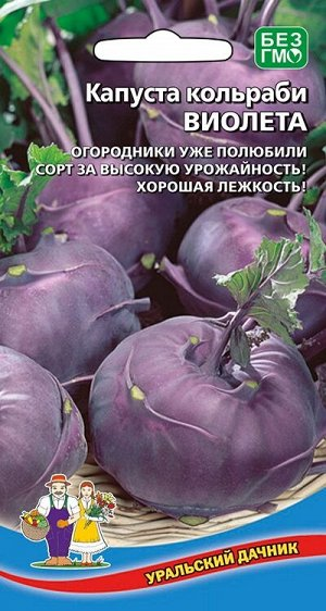 Капуста кольраби Виолета (УД) Новинка!!!