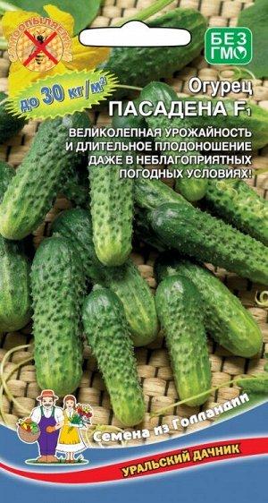 Огурец Пасадена F1 (УД) (ГОЛЛАНДИЯ) (самоопыляемый,8см,кр/буг,букетное плодообразование,до5 завязей)