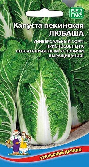 Капуста пекинская Любаша (УД) (ранняя, кочан рыхлый, открытый, до 2 кг, отличный вкус)