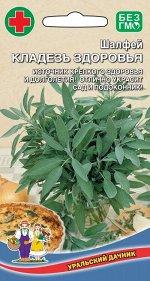 Шалфей Кладезь Здоровья (УД) (многолетний,до 50 см,ароматные листья и цветки)