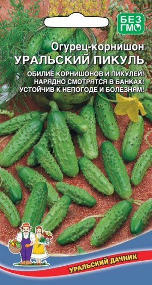 Огурец корнишон  Уральский пикуль-корнишон 12шт