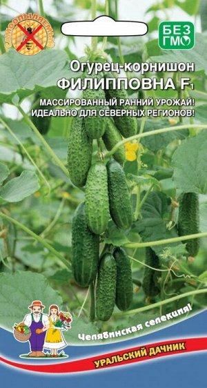 ОГУРЕЦ-КОРНИШОН ФИЛИППОВНА F1