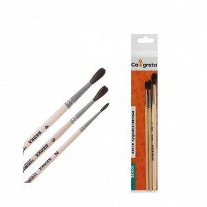 Набор кистей Белка 3 штуки, Calligrata №2 (круглые №: 2, 3, 4), деревянная ручка, пакет
