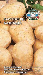 Поступление семян!! Успейте купить! — Картофель — Семена овощей