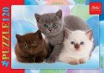Пазл Hatber Три котенка 120 элементов А5 формат 230Х165мм6