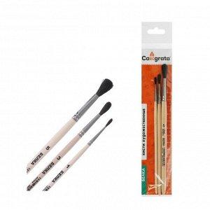 Набор кистей Белка 3 штуки, Calligrata №1 (круглые №: 1, 3, 5), деревянная ручка, пакет