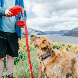 Многофункциональный поводок для собак 5 в 1 Pet Essentials оптом