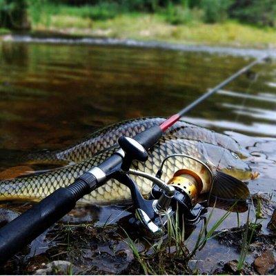 Соц. закупка💯Время экономить! Лучшие товары  — Рыбаловные принадлежности — Все для рыбалки