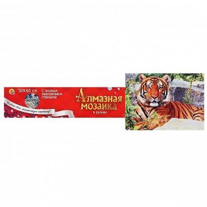 Алмазная мозаика блестящая 30х40 см, без подрамника, с полным заполнением «Тигр на камнях»