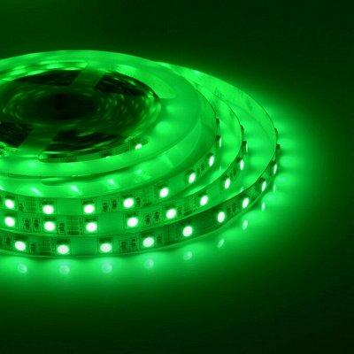 Лампы для Увеличения Яйценоскости! 🐤 Для роста и развития! — Ленты светодиодные 24V — Светильники
