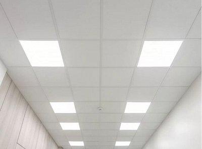 Лампы для Увеличения Яйценоскости! 🐤 Для роста и развития! — Потолочные светильники, Офисный Свет — Светильники