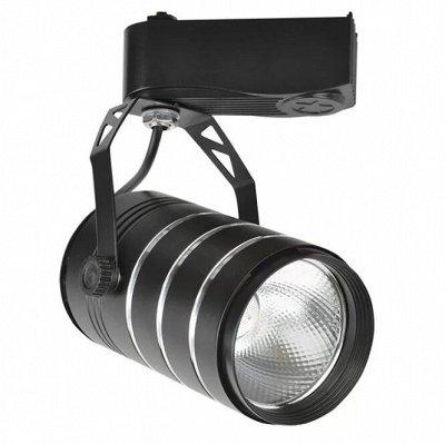 Лампы для Увеличения Яйценоскости! 🐤 Для роста и развития! — Трековые светильники — Светильники