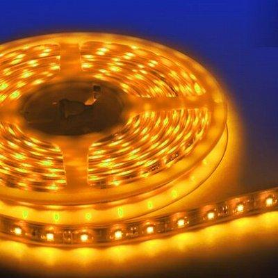 Лампы для Увеличения Яйценоскости! 🐤 Для роста и развития! — Ленты светодиодные 12V — Светильники
